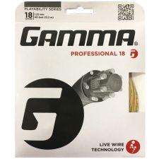 Gamma_Professional_18_01